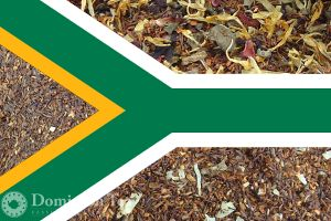 South African Rooibos Tea Exporer Pack